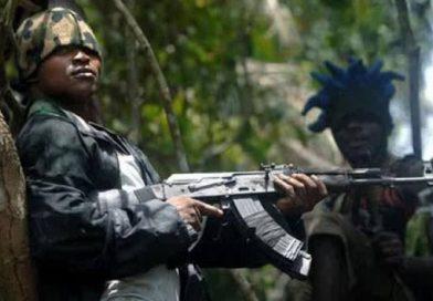 One Soldier Dies as Army Kills 15 Bandits in Fierce Gun Battle in Niger